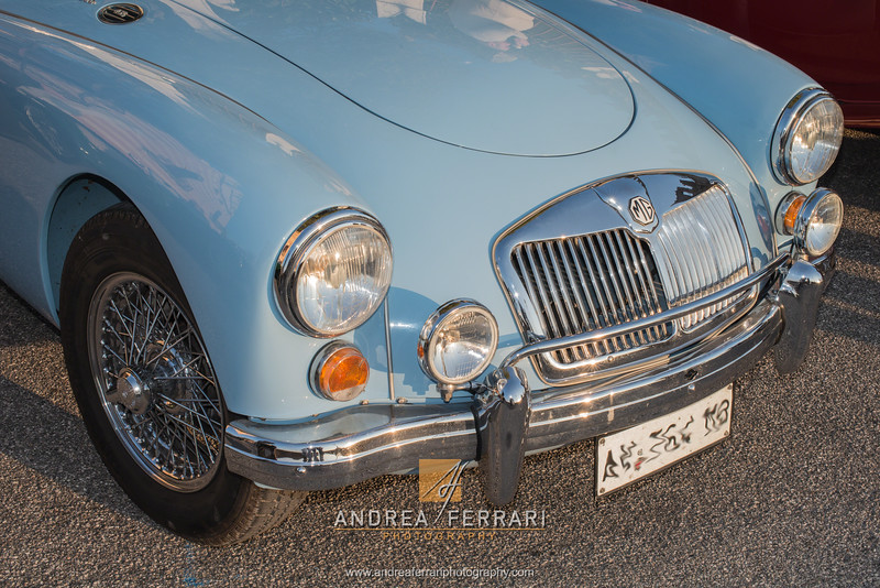 MG winter meeting 2016 (42)