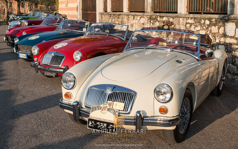 MG winter meeting 2016 (28)