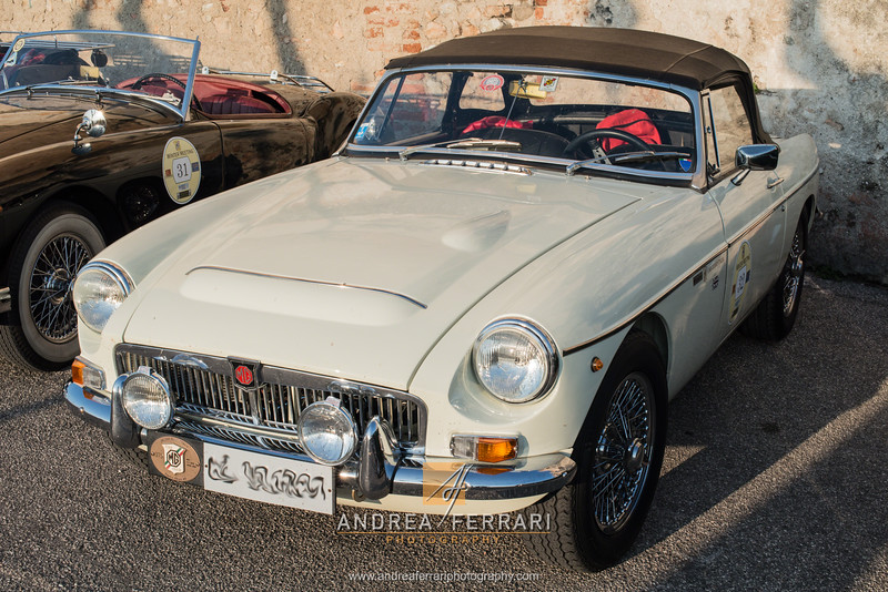 MG winter meeting 2016 (11)