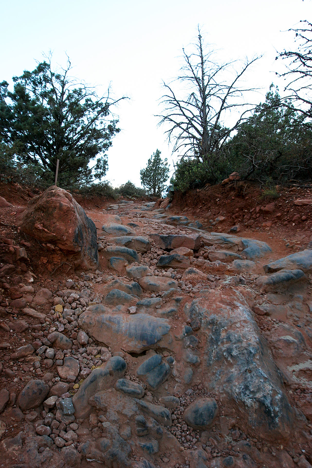 The top of the Stairs along Broken Arrow trail.  This is not very difficult, but it certainly LOOKS daunting from behind the wheel!