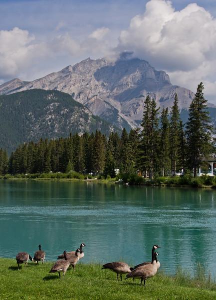 Bow river & Cascade mountain, Banff