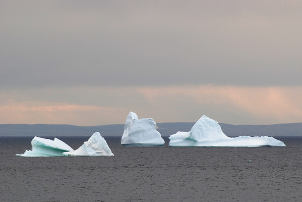Icebergs - Anse-aux-Meadows