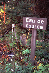 Eau de source - Réserve faunique de Portneuf