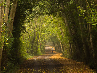 Bike trail to Victoria