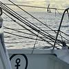 201124_2010_VGOnboard_BH8801_HEIC
