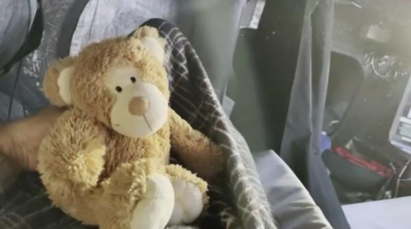 Day 7 - Alphonso the teddy bear