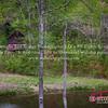 Roxboro-North-Carolina-DIY-Wedding-Photographer-278