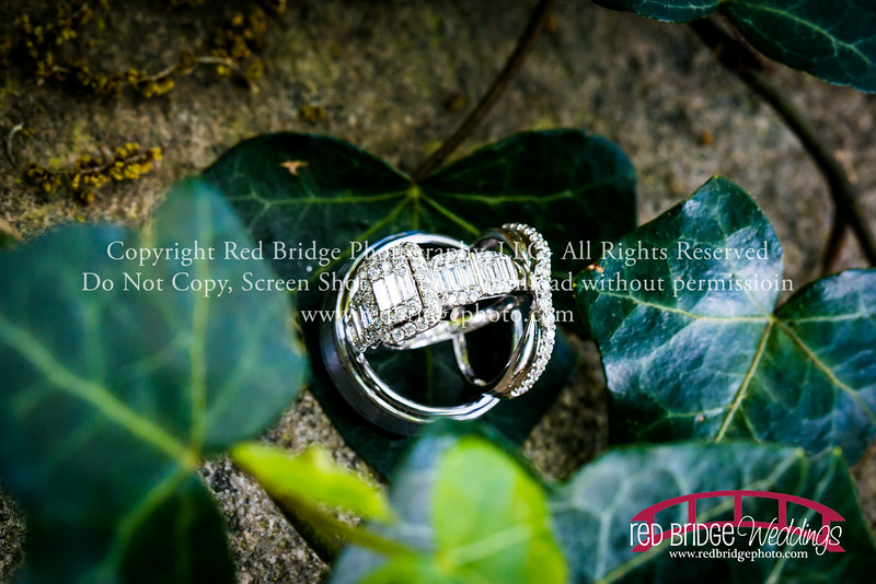 Wake-County-Spring-Courthouse-Wedding-Photography-94