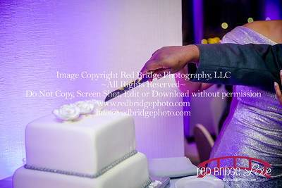 Sheraton-Downtown-Raleigh-Engagement-Party-at-Christmas-34
