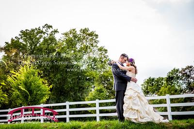 Jennifer & Jason : Raleigh, NC