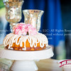 Chapel-Hill-Carriage-House-Wedding-Photography-321