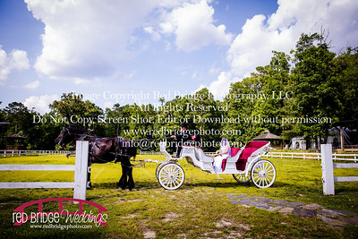 Summer-wedding-photography-of-Sarah-and-David-at-Bennett-Bunn-Plantation-with-bride-arriving-on-a-horse-16