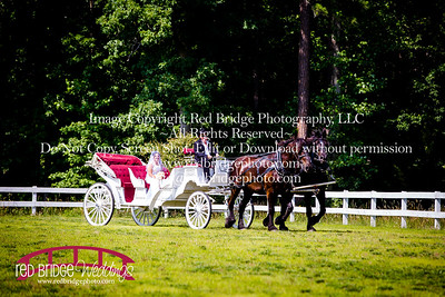 Summer-wedding-photography-of-Sarah-and-David-at-Bennett-Bunn-Plantation-with-bride-arriving-on-a-horse-15