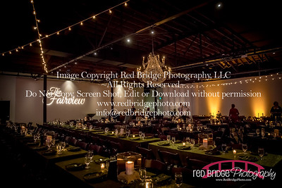Share-to-Care-Raleigh-Benefit-Gala-1