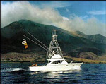 Aerial Sport Fishing Charters