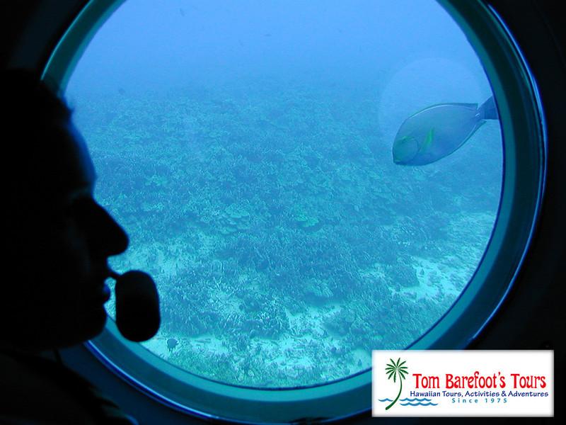 "<a title=""Make a reservation for Atlantis Submarine Hawaii, Kona Sub/Luau Combo with Tom Barefoot's Tours"" href=""http://www.tombarefootshawaiitoursactivities.com/product.php?id=1025&amp;name=Kona_Sub_Luau_Combo"">Atlantis Submarine Hawaii, Kona Sub/Luau Combo</a>"
