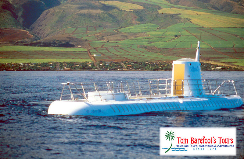 """<a title=""""Make a reservation for Atlantis Submarine , Submarine and Royal Lahaina Luau with Tom Barefoot's Tours"""" href=""""http://www.tombarefootshawaiitoursactivities.com/product.php?id=2245&amp;name=Maui_Submarine__Royal_Lahaina"""">Atlantis Submarine , Submarine and Royal Lahaina Luau</a>"""