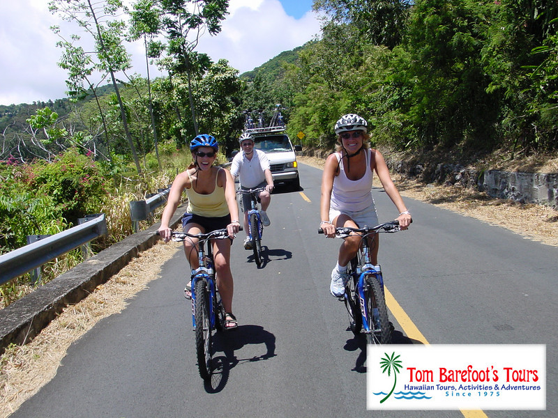 "<a title=""Make a reservation for Bike Hawaii, Oahu Downhill Bike Adventure with Tom Barefoot's Tours"" href=""http://www.tombarefootshawaiitoursactivities.com/product.php?id=3200&name=Oahu_Downhill_Bike_Adventure"">Bike Hawaii, Oahu Downhill Bike Adventure</a>"