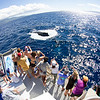 Eco-Adventures Cruises