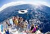Eco-Adventures Cruises