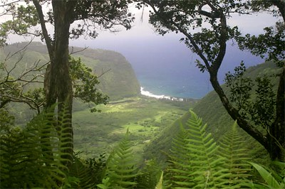"""<a title=""""Make a reservation for Ride The Rim, Waipio Valley Tour with Tom Barefoot's Tours"""" href=""""http://www.tombarefootshawaiitoursactivities.com/product.php?id=3716&name=Waipio_Valley_Tour"""">Ride The Rim, Waipio Valley Tour</a>"""