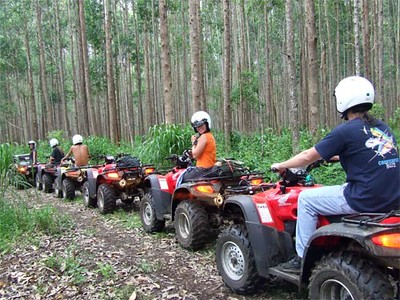 "<a title=""Make a reservation for Ride The Rim, Waipio Valley Tour with Tom Barefoot's Tours"" href=""http://www.tombarefootshawaiitoursactivities.com/product.php?id=3716&name=Waipio_Valley_Tour"">Ride The Rim, Waipio Valley Tour</a>"