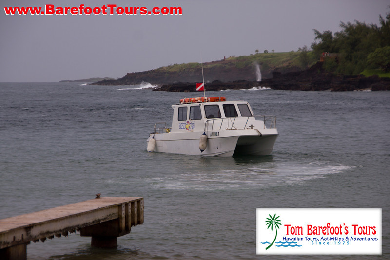 "<a href=""http://www.tombarefootshawaiitoursactivities.com/product.php?id=1758&name=AM_Dive_Charter"">Their boat ""Anuhea"" was waiting for us.</a>"