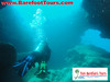 "<a href=""http://www.tombarefootshawaiitoursactivities.com/product.php?id=1758&name=AM_Dive_Charter"">We swam through tunnels.</a>"
