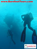 "<a href=""http://www.tombarefootshawaiitoursactivities.com/product.php?id=1758&name=AM_Dive_Charter"">We did two dives.</a>"