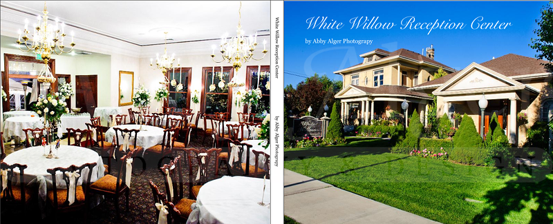 001 White Willow Album Cover