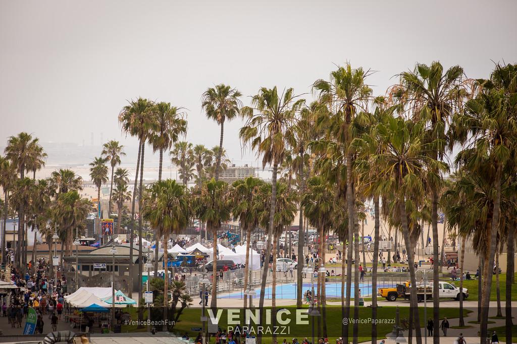 Venice, California.  Photo by www.VenicePaparazzi.com