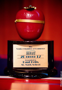 2017 VENICE WAVE AWARDS.  Venice, California.  Photo by VenicePaparazzi.com