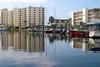 #14 Venice Island, Florida.