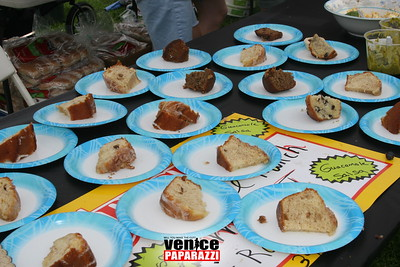 2nd Annual Venice Community BBQ and Picnic (35)