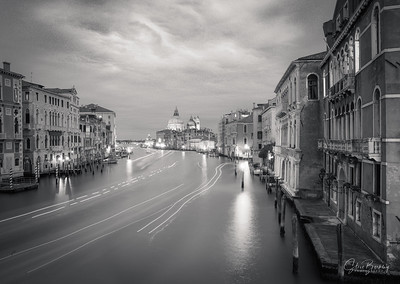 From Ponte dell'Accademia