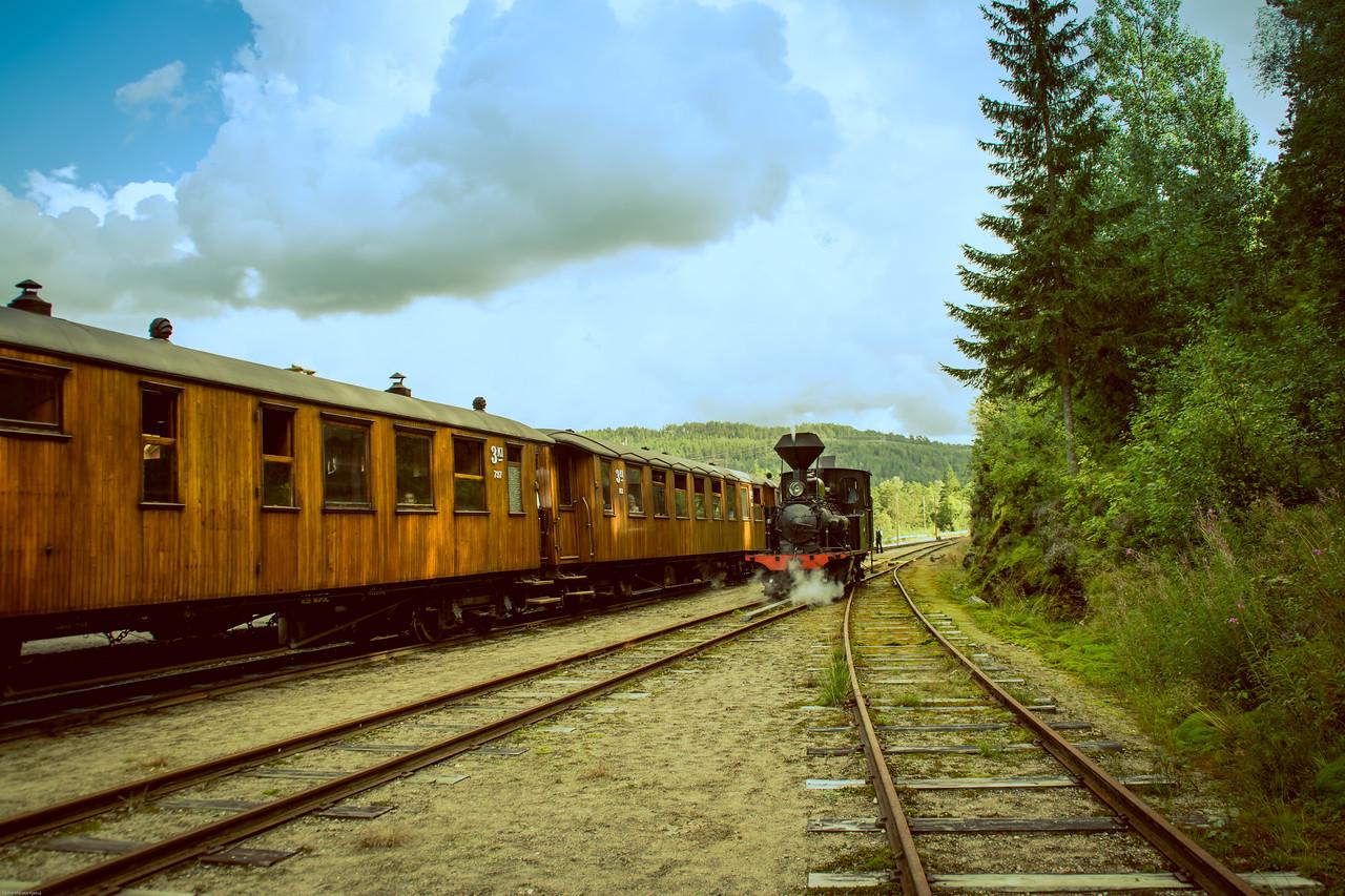 Setesdalsbanen på Røyknes stasjon