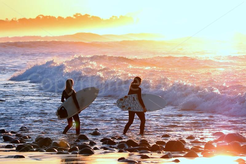 Surf Buddies