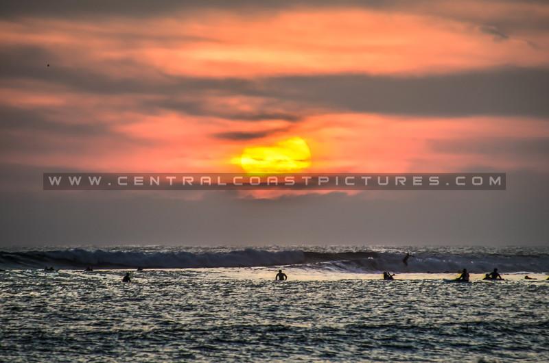 ventura sun surfers 5818-