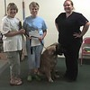 Liz and Bryn earning their Canine Good Citizen title!