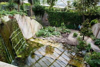Botanic Gardens-27