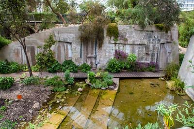 Botanic Gardens-28