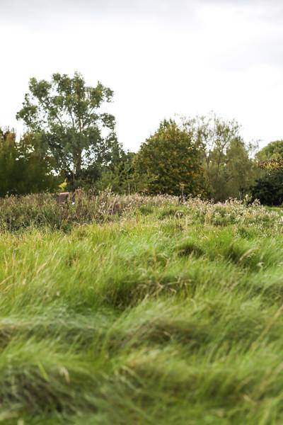 surrey-downs-golf-club-0053