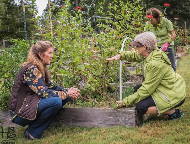 Kathy & DCG gardener