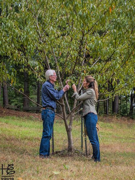 Rod & Kathy - peach orchard