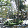 The Beautiful Parque Juarez In The City Center