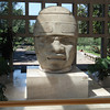 The Museum Has Seven Of The Original Olmec Heads