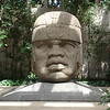 Colossal Olmec Head In The Museo de Antropologia
