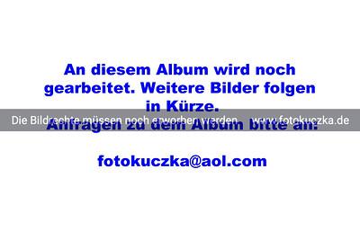 Großer Preis von Arnsberg-Vosswinkel S*** Prüfg. Nr. 20