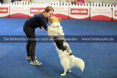 Dogdancing0018