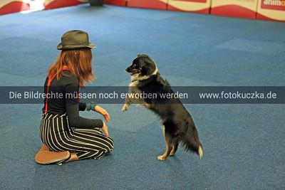 Dogdancing0013